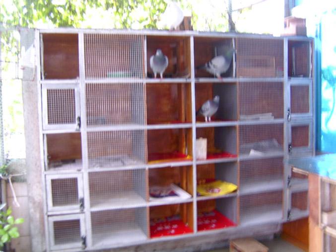 废物利用手工制作书柜步揍图