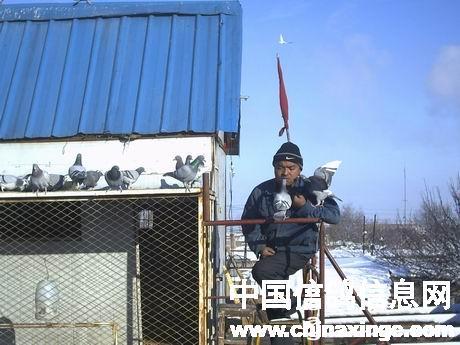 新疆阜康天龙兄弟鸽舍 44 99  作品说明: 新疆的维吾尔族信奉伊斯兰教
