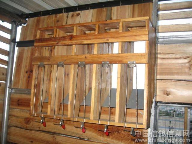鸽子棚跳门设计图图片 鸽子笼的跳门设计制作,鸽子棚的设计