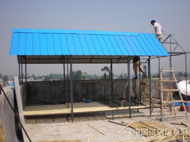 鸽子的窝图片分享; 赛鸽棚设计图片; 彩钢瓦房顶设计图片;
