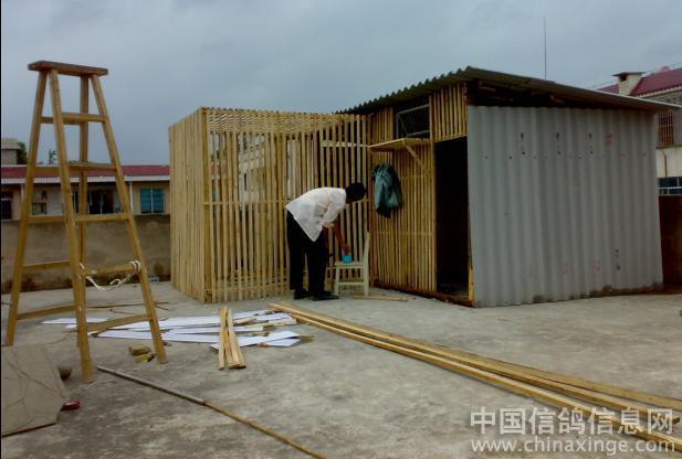 圆木房房子图片