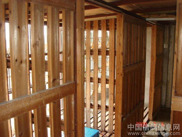 宽敞明亮全木结构的晒棚