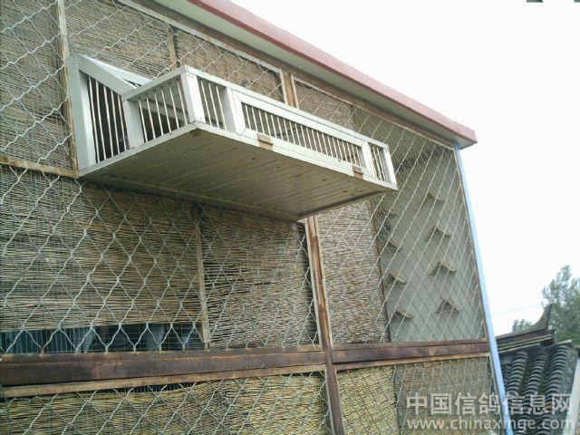 王飞鸽舍参加 秀出你的鸽舍 ---中国信鸽信息网相册