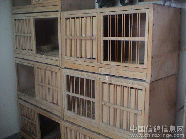 鴿子養殖籠的設計圖