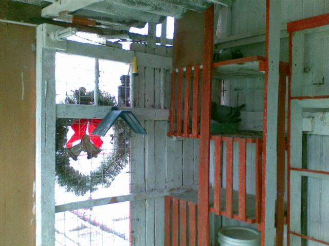 高原红反烧锅炉内部结构图