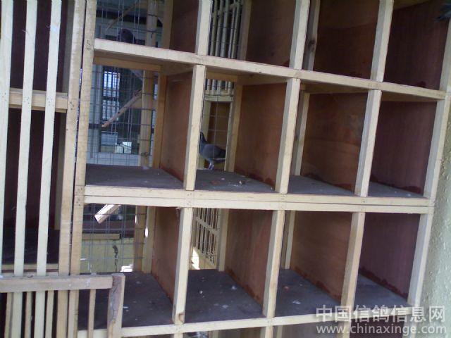 我的分院新鸽舍广东省建筑设计研究院中山阁楼图片