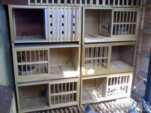 欧式信鸽巢箱组装图