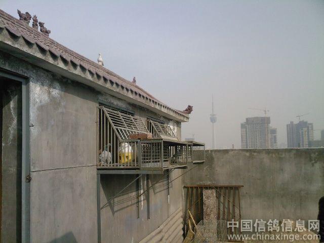 前方是西安市南郊的电视发射塔