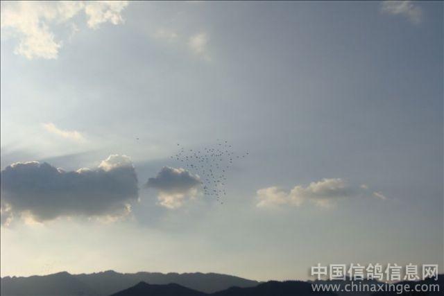 1楼 评论者:中信网友    时间:2010-7-21 0:39:00 蓝天    乌云
