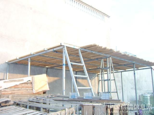 农村屋顶鸽舍设计