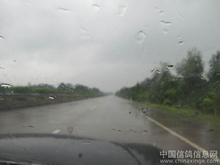 雨天风景图片带字