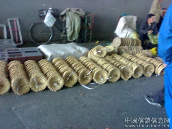 00 上海 15 41  作品说明: 上海火车站北广场东边500米高架桥下的鸽市