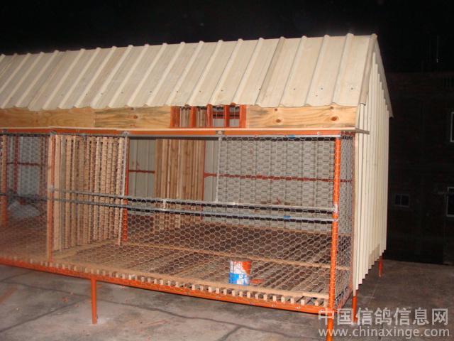 小鸽棚设计大全图简单