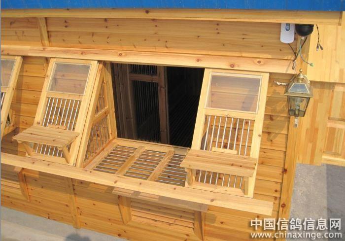 喜欢的鸽棚; 赛鸽鸽舍设计图_赛鸽鸽舍; 11(71)