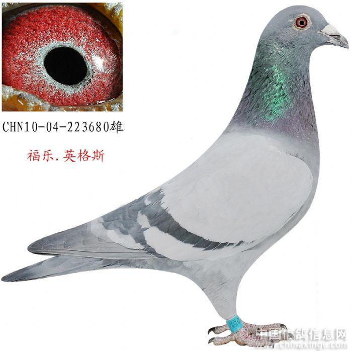 http://a2.att.hudong.com/86/90/31300543865129146941909332335.png_com    mg src=\