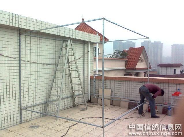 中国 建造/战狼鸽舍的建造全过程//中国信鸽信息网相册...