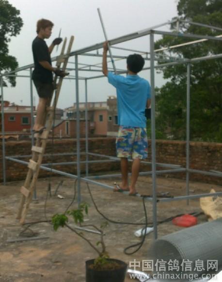 建造中的鸽舍