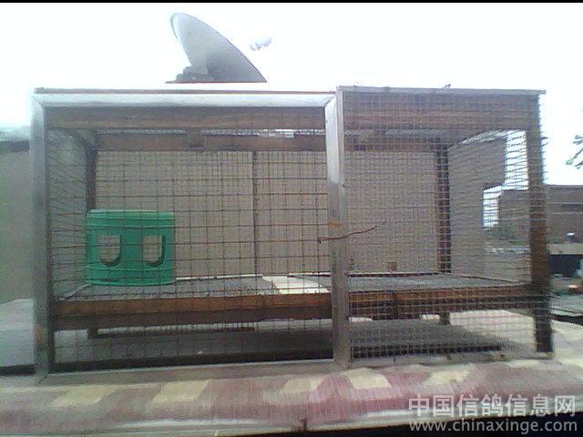 信鸽鸽舍设计图展示