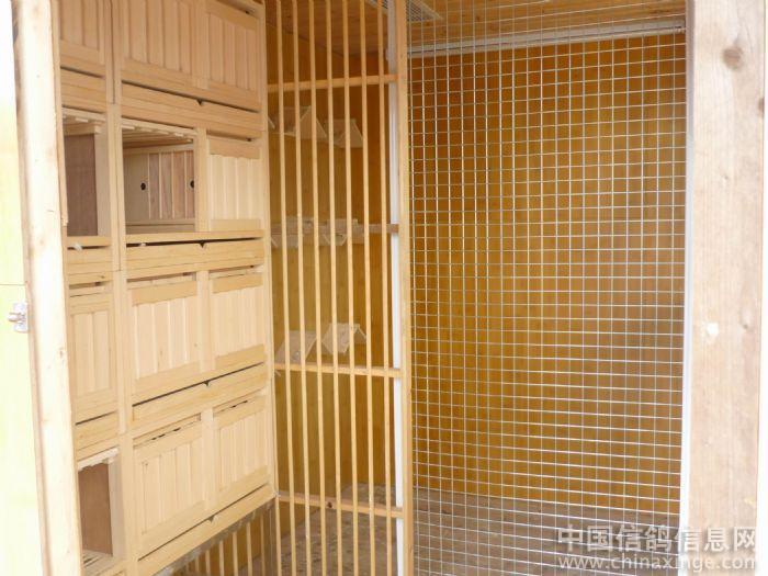 赛鸽舍雌雄可分可合,赛鸽舍采用台湾明月订制赛鸽橱,更利于赛鸽