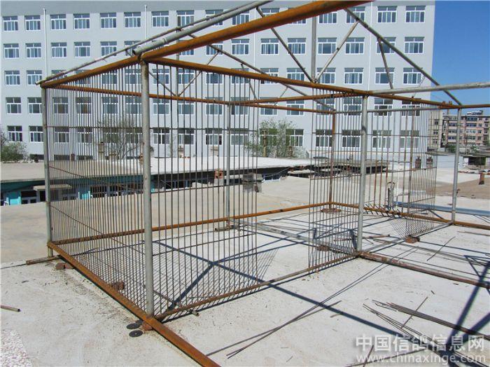 冬暖夏凉舒适性鸽舍 ---中国信鸽信息网相册