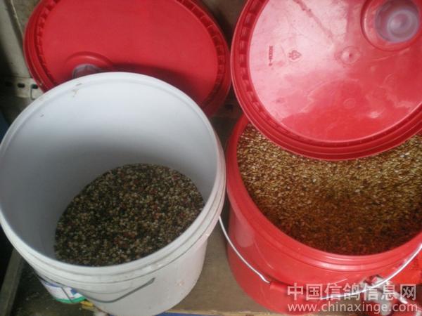 这种塑料桶密封很好,储存粮食不易生虫.