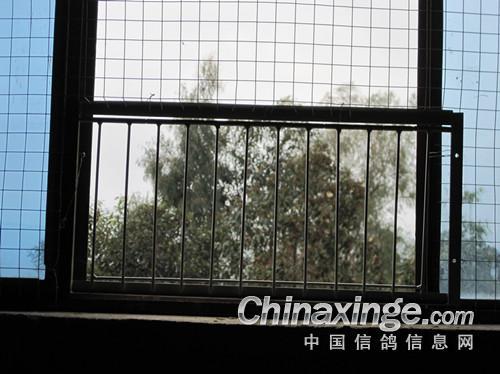 十三楼窗户外面的风景