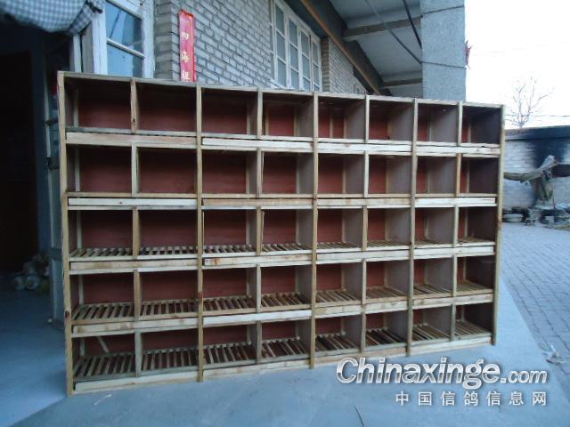 --中国信鸽信息网铅笔封面设计素材手绘相册图片