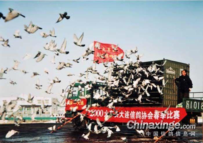 放飞中国梦素描