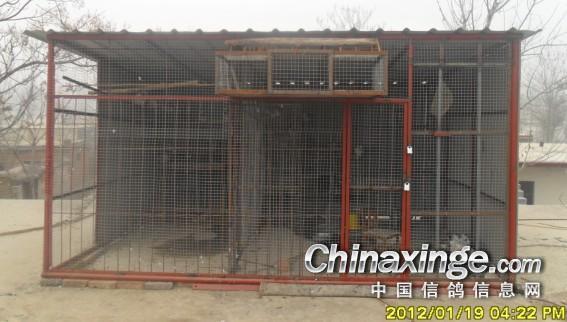 农村小型鸽舍建造图片_收藏的一些鸽舍--中国信鸽信息网相册
