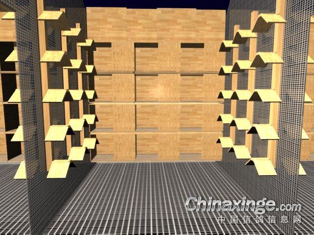 鸽子巢箱设计图; 理想中的鸽棚;;