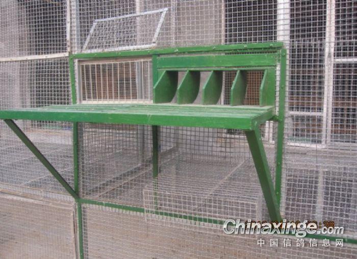 新建鸽舍--中国信鸽信息网视频相册视频聊天图片