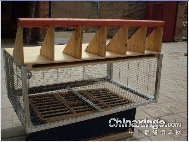 信鸽鸽舍跳笼设计展示