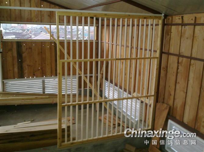 鸽子养笼子设计图