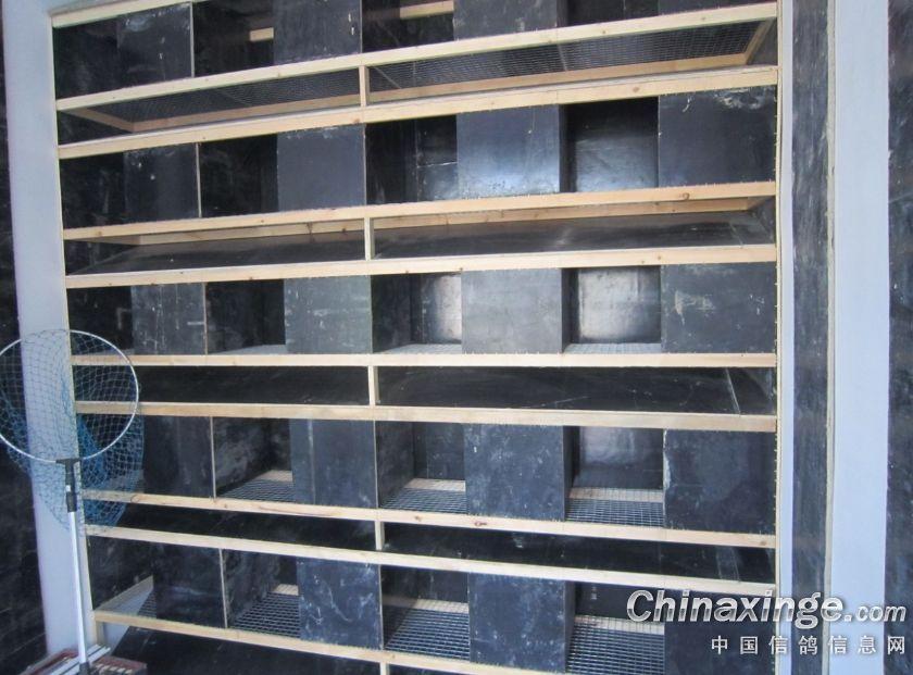中国 鸽舍/自己计设的种鸽巢箱,不好看,但很实用!...
