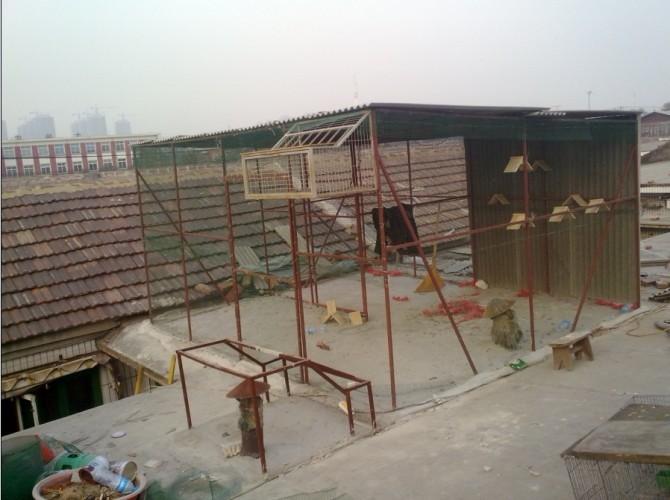 楼顶栏杆设计图展示