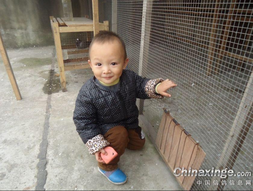 顶起 1楼 评论者:中信网友    时间:2012-11-21 1:38:08 小朋友可爱