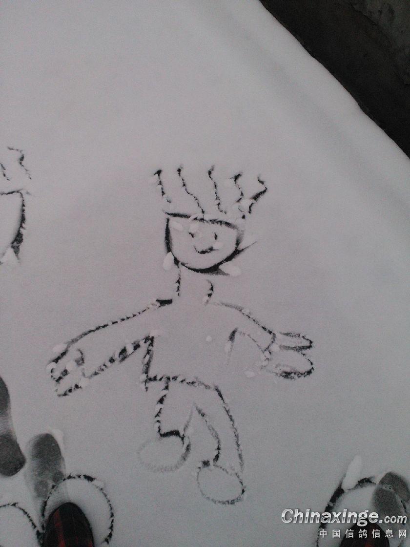 放飞白鸽手绘图片