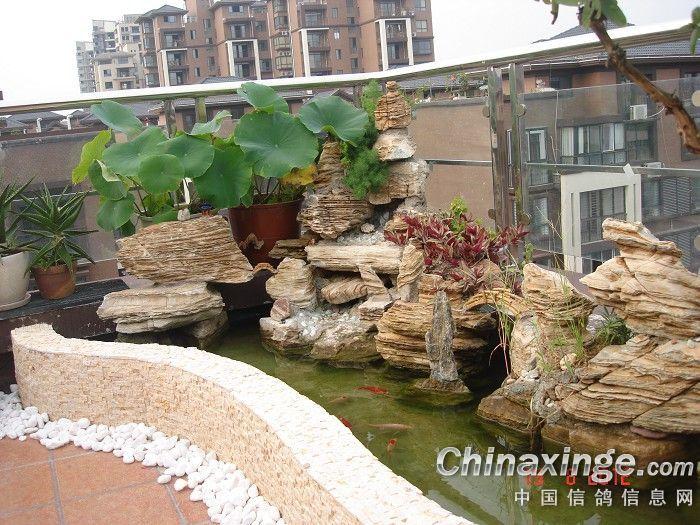 楼顶鱼池设计效果图图片欣赏下载