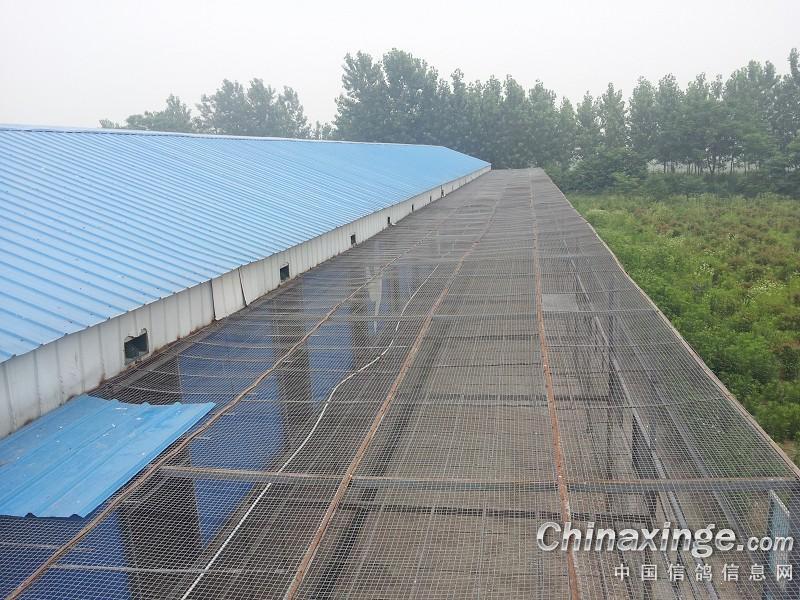 4米,采用全钢木结构,每间长3.3米用木条隔间,装226个休息架,底网用4.