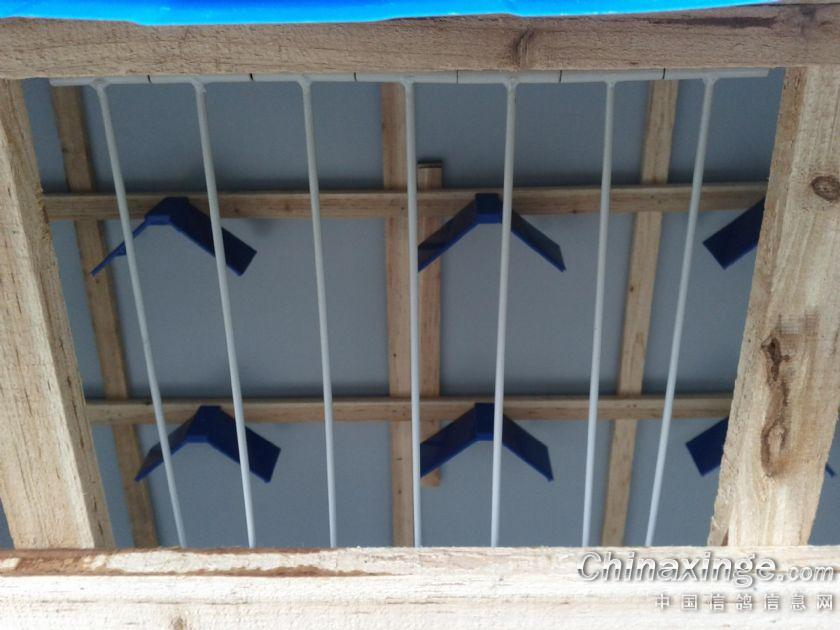 自己做的鸽哨 和小鸽棚