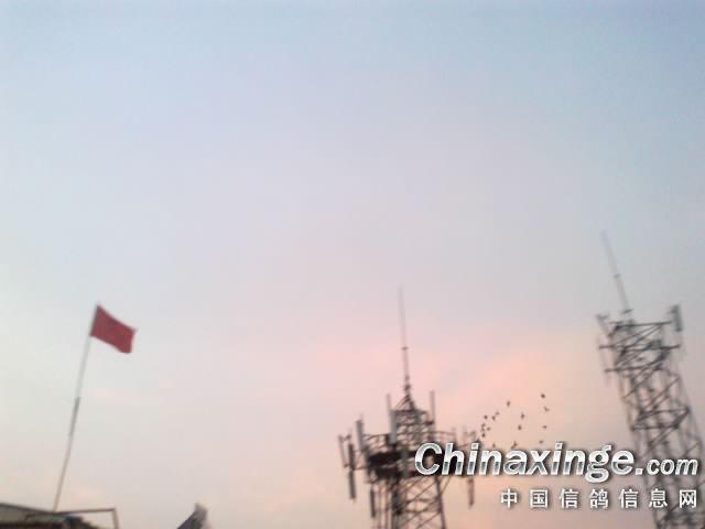 青岛信号塔图片