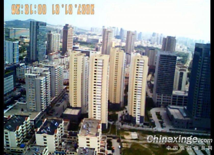 上海市最近天气_山东省青岛市最近几天的天气预报-未来几天青岛市天气预报