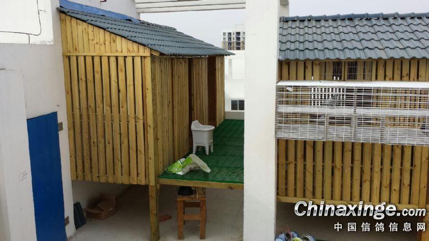 鸽主自己设计建造的鸽舍
