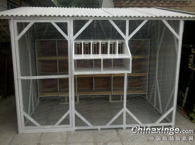 简易鸽舍--中国信鸽信息网相册