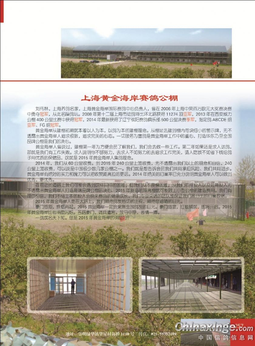 上海黄金海岸公棚决赛冠军分速1464米(图)_手机搜狐网