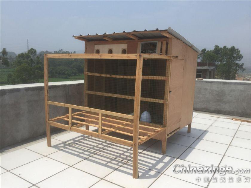 鸽棚设计图_新鸽棚--中国信鸽信息网相册